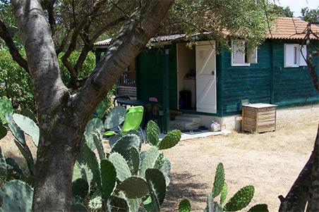 Un autre bungallow du camping les Oliviers à Ile Rousse en Corse