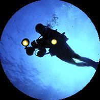 Un plongeur équipé du matériel photo-pro